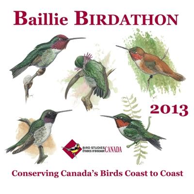 Baillie Birdathon