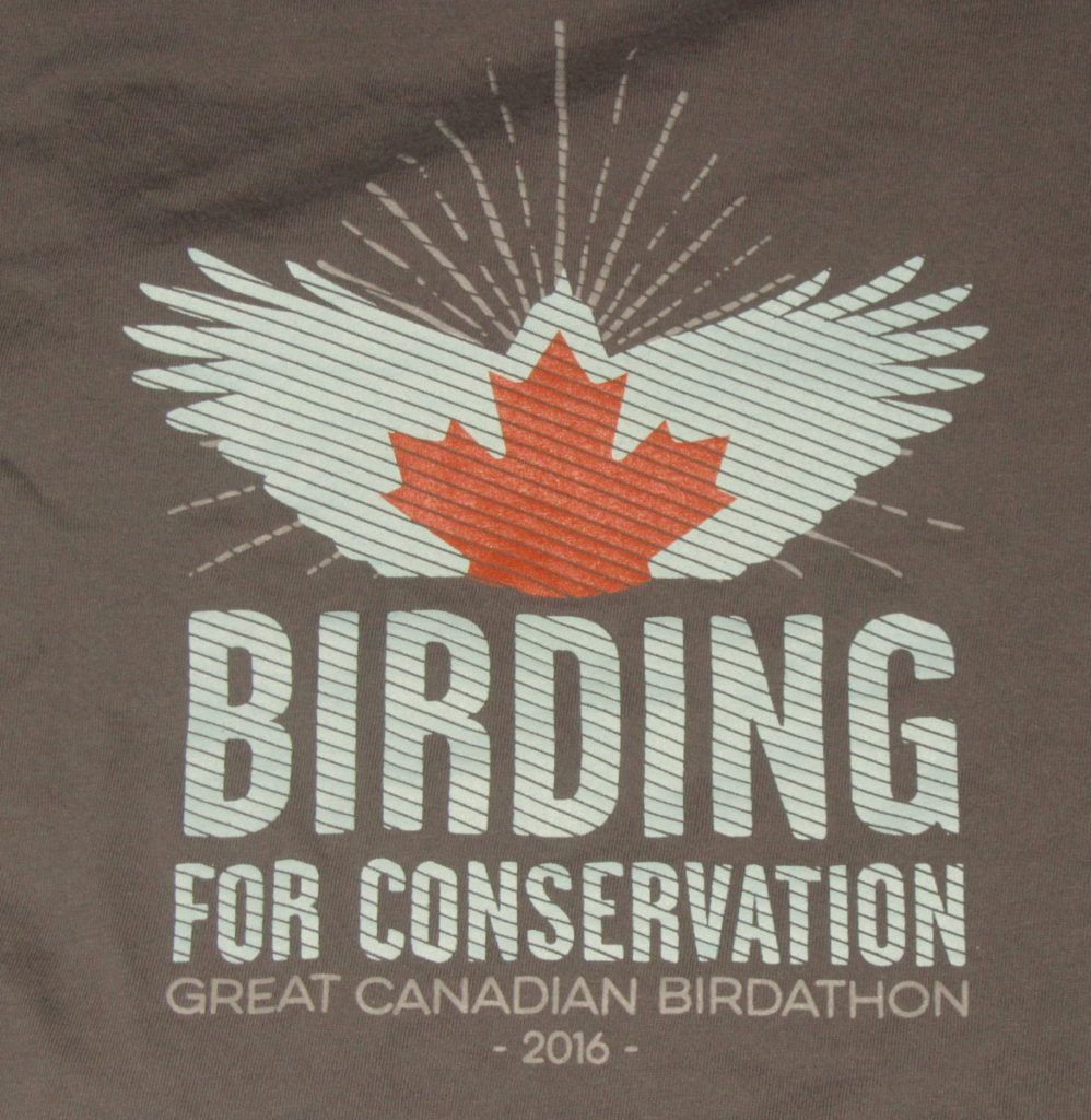BirdBoy Great Canadian Birdathon 2016