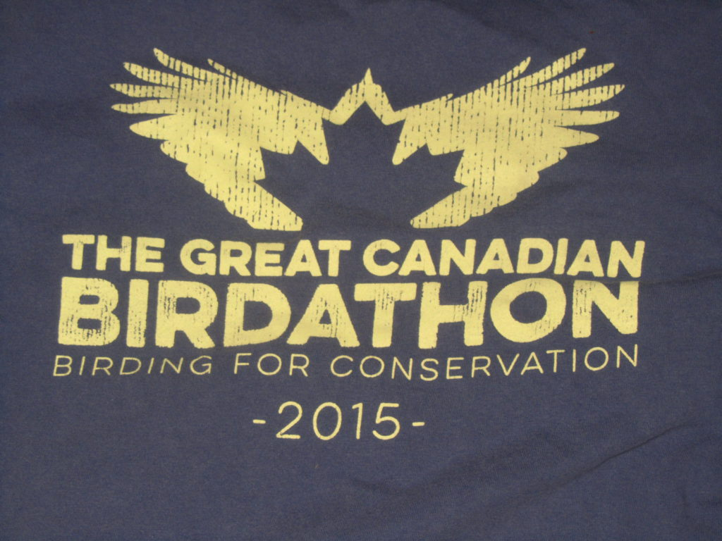 BirdBoy Great Canadian Birdathon 2015